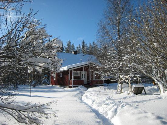 Northern Star Wilderness Ranch & Biker Lodge