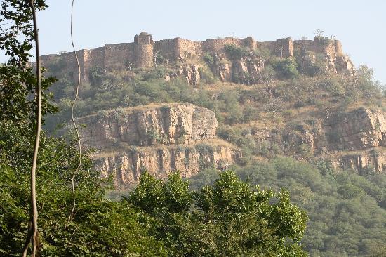 Castle Jhoomar Baori: Cliff Side
