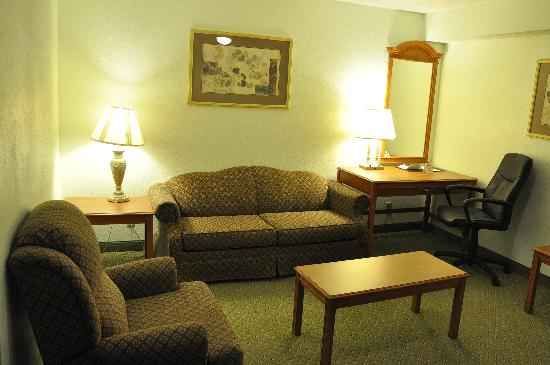 Comfort Inn & Suites Airport: Suite Living Room
