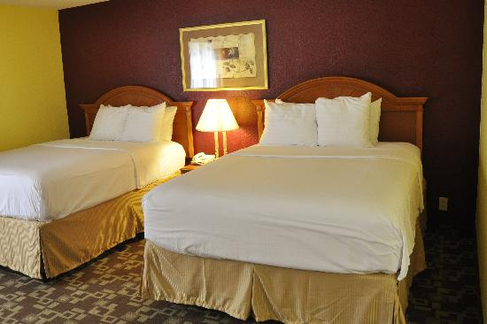 Comfort Inn & Suites Airport: New Queen Beds