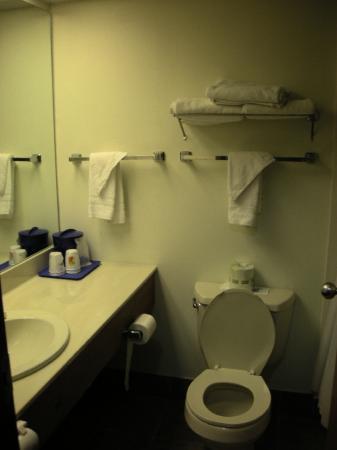 Super 8 Stevensville: Standard Bathroom
