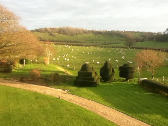 Higher Melcombe Manor: What A View