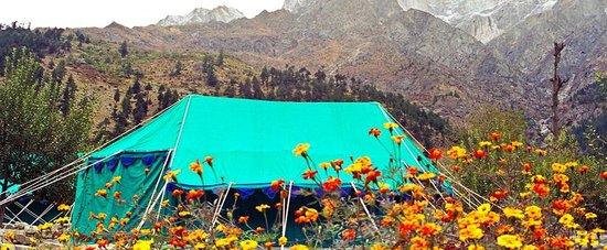 Baikunth Adventure Camp: Baikunth Resorts & Camps
