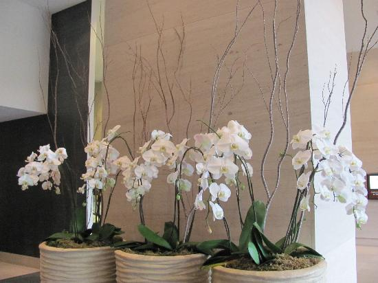 The Westin Bellevue: flowers in the lobby