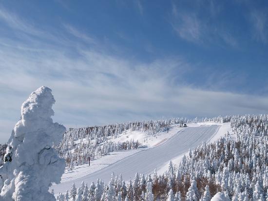 Hotel Grand Phenix Okushiga: 標高2000mの樹氷と奥志賀第四ゲレンデ