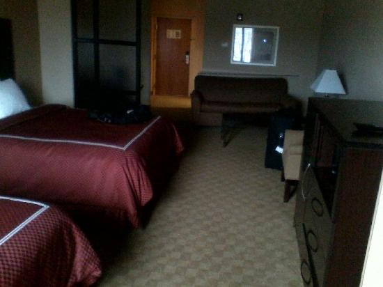 Comfort Suites Macon: Picture of room