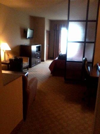 Comfort Suites Macon: Other side of room