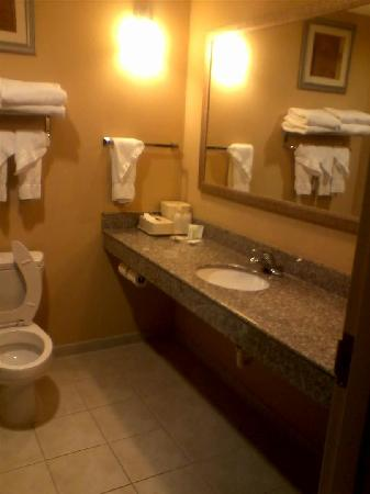 Comfort Suites Macon: Bathroom