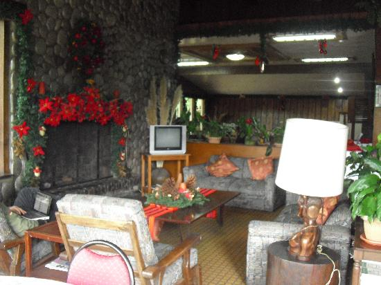 Mountain Lodge: Living room and lobby