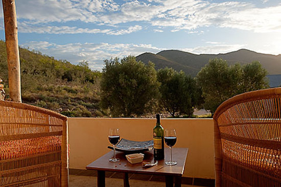 Olive Garden Country Lodge: olive tree impressions