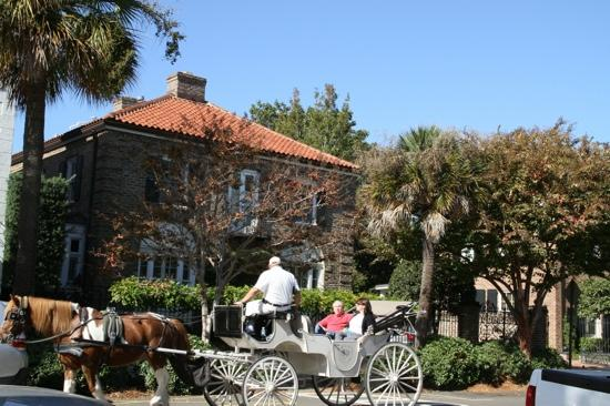 Charleston History Tours: carriage ride