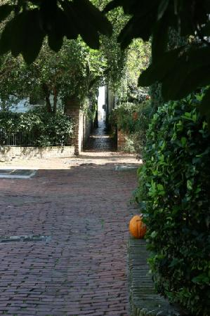 Charleston History Tours: down the alley