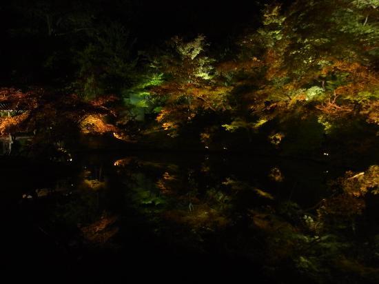 Kuil Kodai-ji: 高台寺