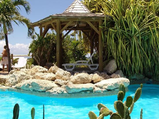Hostellerie des Chateaux: carbet piscine