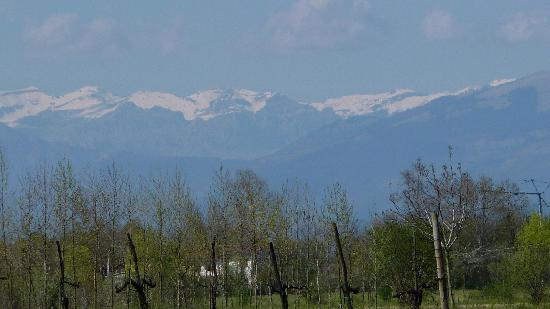 "Agriturismo ""Il Cascinale"" : View from the Cascinale"