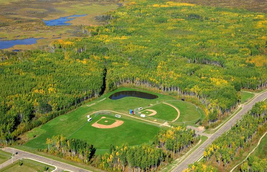 High Level Community Park: Aerial shot of 2 baseball diamonds and the dog park