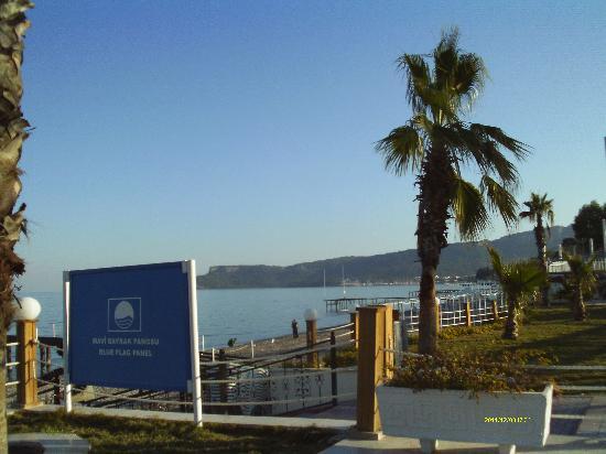Rose Beach Residence : пляж отмечен Голубым флагом