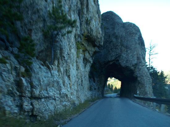 Iron Mountain Road: one of several tunnels