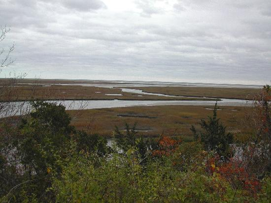 Fort Hill Bed and Breakfast: Nauset Marsh from Fort Hill