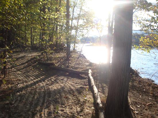Timberland Campground: Miles of walking trails around the property