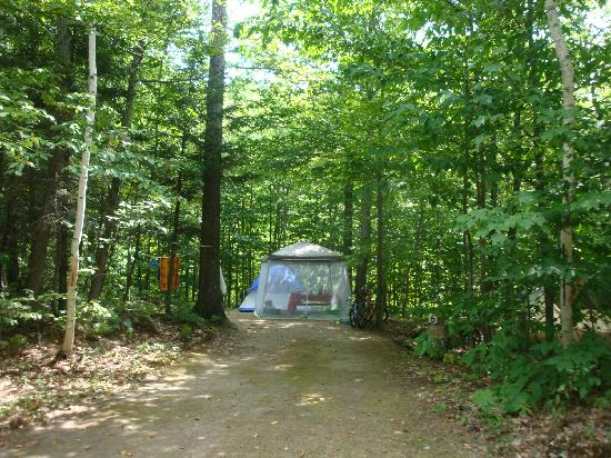 Timberland Campground: Private Wooded Sites