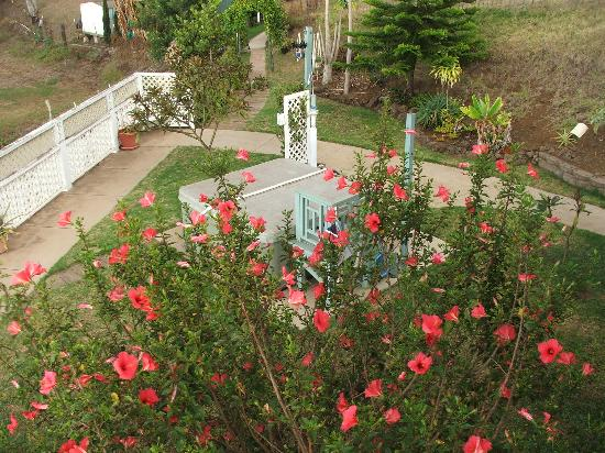 Upcountry Bed and Breakfast: hot tub & outdoor shower