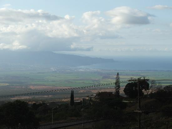 Upcountry Bed and Breakfast: view from Upcountry B&B