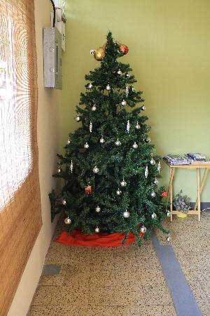 Thanna's Place: Merry Christmas!