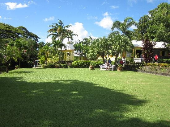 Annie's Caribbean Tours and Excursions: Went to Caribelle Batik. Beautiful grounds and a lesson on batik making.