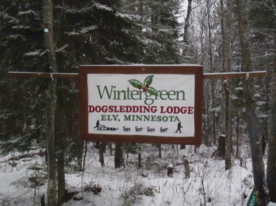 Wintergreen Dogsled Lodge: Arrival