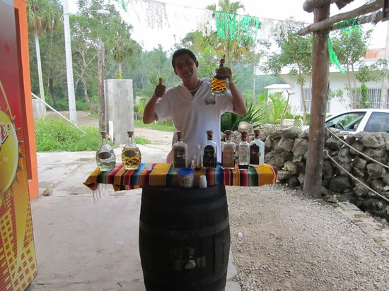 Free Tequila Tour By Casa Mission: Our tequila tour guide