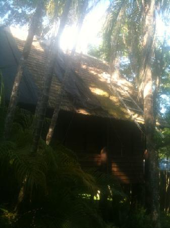 Kuranda Resort: chalet roof