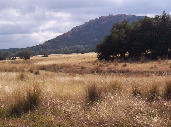 写真Hill Country Equestrian Lodge枚