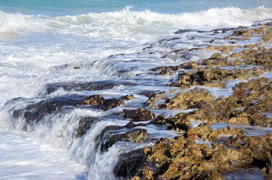 Paradisus Varadero Resort & Spa: Beautiful scene on beach - who cares if no sand.  Walk to main resort for sandy beach.
