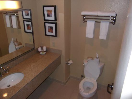Cocopah Resort & Conference Center : Washroom