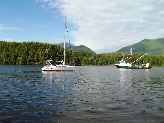 Wild Pacific Sailing - Day Tours: Ucluelet Harbour
