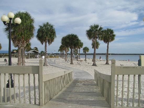 Pine Island Park Walkway On Beach