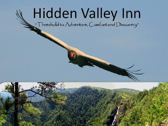 Hidden Valley Inn: King Vulture