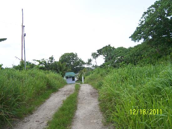 Blue Pango Motel: The path from the main road