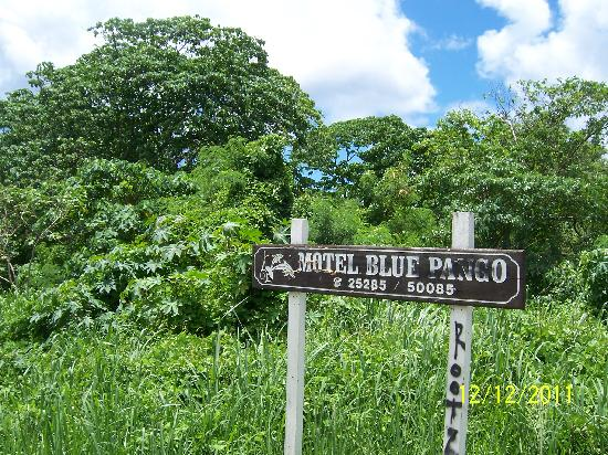 Blue Pango Motel: Main Road