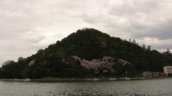 Nakaumi Sea: View towards the beach.  Notice the Sakura.