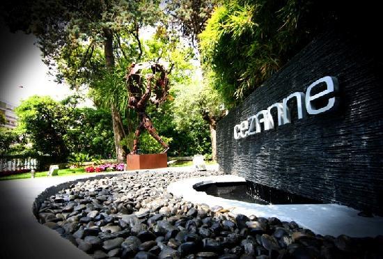 Cezanne Hotel: Zen entrance