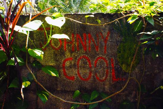 Johnny Cool Cafe: johnny cool's imprint