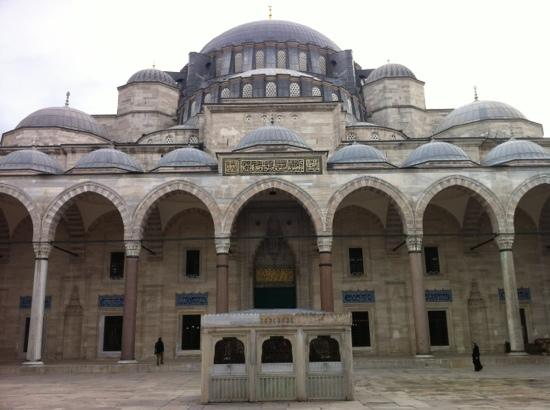 Rose Garden Suites Istanbul: Ist