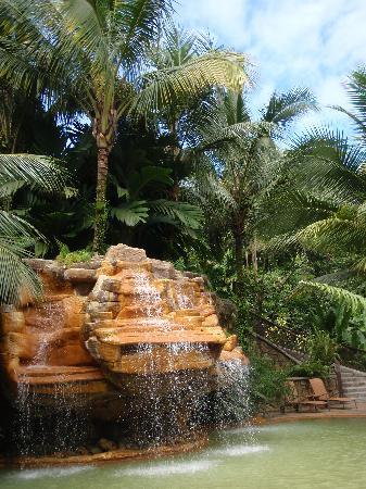 The Springs Resort and Spa: laguna pool