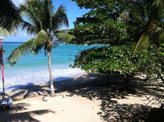 Tamarind Beach Hotel & Yacht Club: TBH