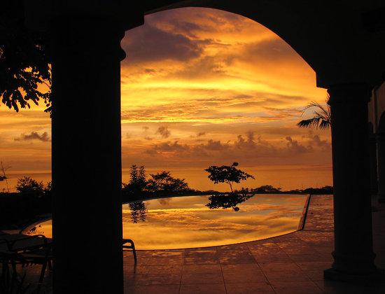 Tropical Comfort Tours