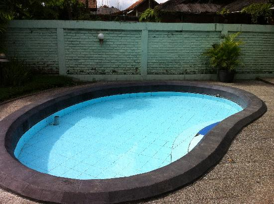 Kampung Sumber Alam: Hot sping soak pool in our suite