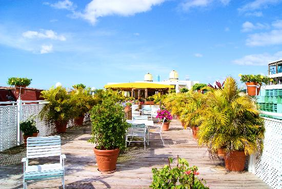 Hotel Melia Ponce: A view of the beautiful terrace
