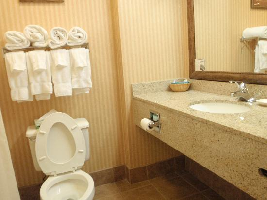 Grand Plaza Hotel Branson: bathroom